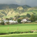 paeroa New Zealand Shipping Containers